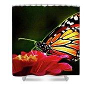 Artistic Monarch Shower Curtain
