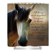 If Horses Could Talk - Verse Shower Curtain
