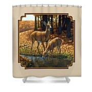 Whitetail Deer - Autumn Innocence 1 Shower Curtain