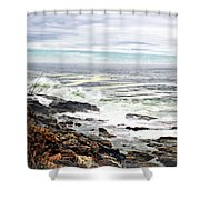 Blustry Passion Shower Curtain