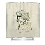 Ramphastidae Shower Curtain