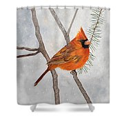 Fire On Ice Shower Curtain