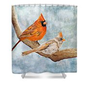 Together Above All Shower Curtain