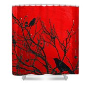 Raven - Black Over Red Shower Curtain