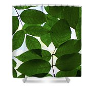 Natural Patterns I Shower Curtain by Emily Johnson