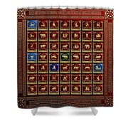 Standards Of Roman Imperial Legions - Legionum Romani Imperii Insignia Shower Curtain