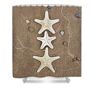 Starfish In The Sand Shower Curtain by Emily Johnson