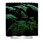 Asparagus Fern Shower Curtain