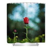 Aspecial Flower  Shower Curtain