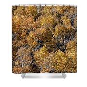 Aspen Autumn Leaves Shower Curtain