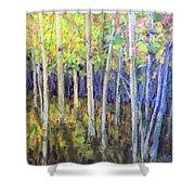 Aspen IIi Shower Curtain