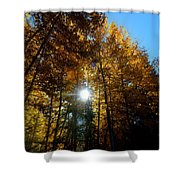 Aspens Sunlight 2 Shower Curtain
