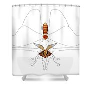 Atlas Moth1 Shower Curtain