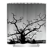 Atop Starved Rock Shower Curtain