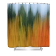 Autumn And Evergreen Shower Curtain