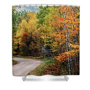 Autumn Buck  Shower Curtain by Patti Deters