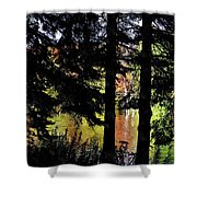 Autumn Colors At The Spa  Shower Curtain
