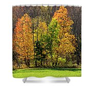 Autumn Colour In Southern Ontario Shower Curtain