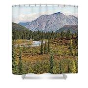 Autumn In Denali Shower Curtain