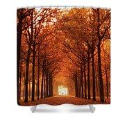 Autumn Lights At Groeneveld Shower Curtain