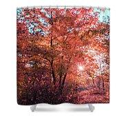 Autumn Path Reimagined Shower Curtain