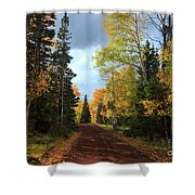 Autumn Pathway Shower Curtain