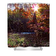 Autumn Starburst Shower Curtain