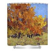 Autumn Treasure Shower Curtain by David King