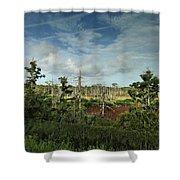 Autumnal Altamaha Shower Curtain