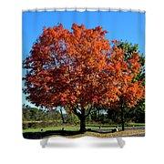Autumnal Beauty Shower Curtain