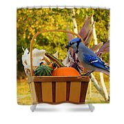 Autumn's Bounty Shower Curtain