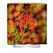 Autumn's Glow 2 Shower Curtain