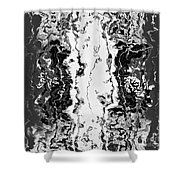 B W Iner Shower Curtain