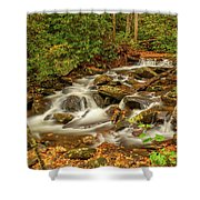 Babbling Brook Shower Curtain by Meta Gatschenberger