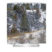 Badlands Winter Shower Curtain