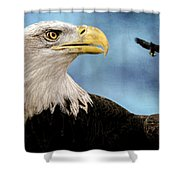 Bald Eagle And Fledgling  Shower Curtain