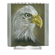 Bald Eagle With A Keen Eye Shower Curtain by MM Anderson