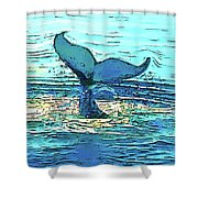 Balene-whales Shower Curtain