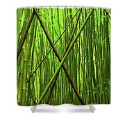 Bamboo X Shower Curtain