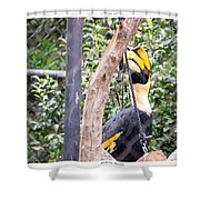Banana Bill Shower Curtain