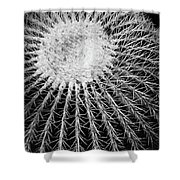 Barrel Cactus Black And White Shower Curtain