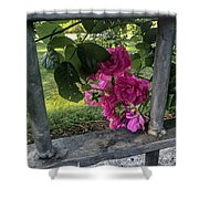 Bars Of Rose Shower Curtain