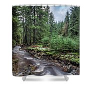Beautiful Ethereal Style Landscape Image Of Small Brook Flwoing  Shower Curtain