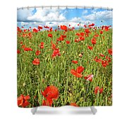 Beautiful Fields Of Red Poppies Shower Curtain