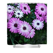 Beautiful Pink Flowers In Grass Shower Curtain
