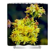 Bee On Goldenrod Shower Curtain by Meta Gatschenberger
