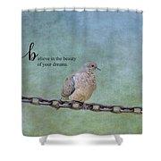 Believe In The Beauty Shower Curtain by Kim Hojnacki
