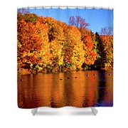 Bernharts Dam Fall 008 Shower Curtain