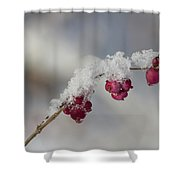 Berry Snowy  Shower Curtain
