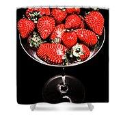 Berry Tonic Shower Curtain
